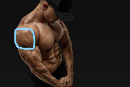 カッコいい体の条件~服の上からでもわかる良い体になりたいなら肩を鍛えよう~
