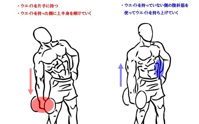外腹斜筋の鍛え方、見ると鍛えたくなる、びっくりするくらいカッコいい腹筋や少し変わった腹筋画像集