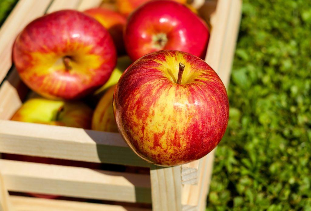 ローファットダイエットにおすすめの果物、りんご