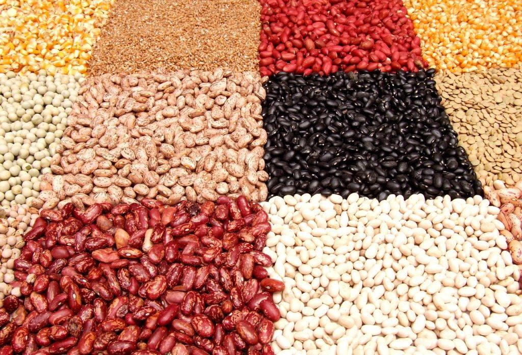 ダイエット中にオススメの炭水化物13選【白米や食パンの置き換えに最適】、豆類